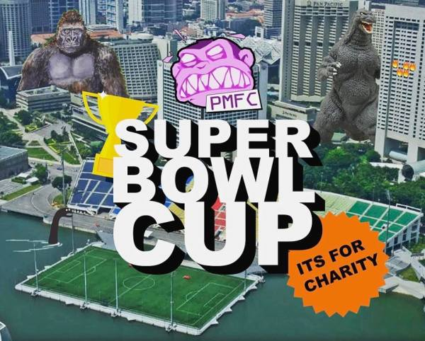 Super Bowl Cup - For Charity